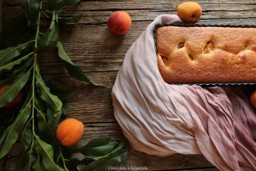 torta di albicocche senza farina