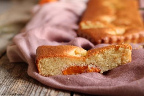 torta albicocche senza farina